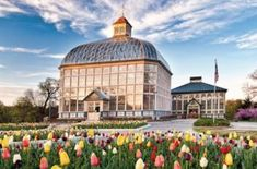 Rawling Conservatory in Baltimore MD