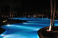Tropical Resort Swimming Pool at Nighttime with Palm Trees