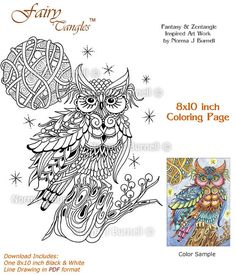 214 Best Color Owls Images Barn Owls Paintings Coloring Books