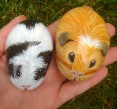 Guinea pigs hand painted on cobble rock