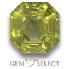 GemSelect features this natural untreated Apatite from Madagascar. This Green Apatite weighs 4.1ct and measures 8.4 x 8.3mm in size. More Asscher Cut Apatite is available on gemselect.com #birthstones #healing #jewelrystone #loosegemstones #buygems #gemstonelover #naturalgemstone #coloredgemstones #gemstones #gem #gems #gemselect #sale #shopping #gemshopping #naturalapatite #apatite #greenapatite #octagongem #octagongems #greengem #green Green Gemstones, Loose Gemstones, Natural Gemstones, Buy Gems, Asscher Cut, Gem S, Gemstone Colors, Madagascar, Shades Of Green