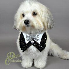bow for dog tuxedo   HOME > Dog Tuxedos > Black Velvet Dog Tuxedo w/ Silver Bow Tie