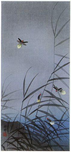 Fireflies  by Ohara Koson, 1934  (published by Watanabe Shozaburo)