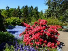 Seattle Parks Foundation Kubota Gardens Tour, May 11, 2012