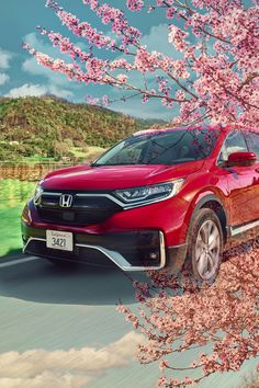 Here's to new beginnings and even more colorful adventures. #firstdayofspring #HondaCRV Cr V Honda, Tuning Honda, Roof Rails, Honda Crv, Rear Seat, Tail Light, Motor Car, Touring, Around The Worlds