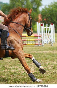 HORSE BE TURNIN