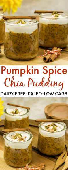An easy and healthy fall inspired breakfast, snack or dessert with only 5 simple and wholesome ingredients you will obtain a deliciously thick and creamy pudding in no time! – Easy Pumpkin Spice Chia Pudding Recipe [Dairy and Nut Free, Paleo, Low Carb].