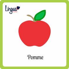 Manzana/ Pomme - Frutas en Francés/ Fruits en Français - Lingua Institute