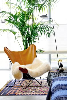 mid century- the texture contrast on the armchair is very cool.