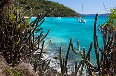 Named for a Dutch privateer, Jost Van Dyke's colorful history seems to saturate every inch of the three-square-mile isle. #caribbean