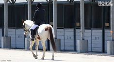 Going to a horse show by yourself can seem intimidating, but you can do it! Here's how.