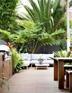 10 glorious coastal gardens Tropical beauties in varying heights and foliage colours create points of interest around this Quercus Gardens designed courtyard in Bondi. The post 10 glorious coastal gardens appeared first on Outdoor Diy. Tropical Garden Design, Modern Garden Design, Tropical Landscaping, Colorful Garden, Front Yard Landscaping, Patio Design, Landscape Design, Landscaping Ideas, Small Tropical Gardens
