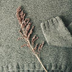 Those lovely Owl stitches...  Detail of the Heath pullover by Elizabeth Smith from the Marsh collection. In color Taiga.  #quinceheath #quinceandco #marshcollection