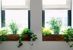 Windows sills aren't smack dab in the middle of a room, but they are still prime real estate — just think of all that light from the windows and view of the outdoors. Don't overlook the opportunity to do more with this seemingly small and narrow space. These seven project ideas not only expand the sill's usefulness, they also give your windows a more finished look.