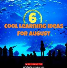 6 cool family activities for hot days.