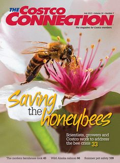 Great Cover Story In The Costco Connection Magazine Highlighting Plight Of Humble Honey Bee