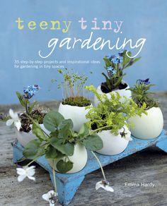 anthropologie egg crate + egg shells + teenie plants + glass terrarium... #diyweekend credit @teenytinygardeningcover