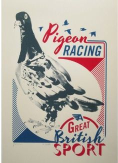 Liz Loveless & James Brown's Racing Pigeon Print