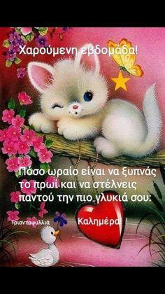 Good Morning Happy Sunday, Teddy Bear, Memes, Hair, Beauty, Whoville Hair, Teddybear, Cosmetology, Meme