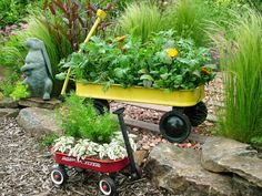 When your kids have outgrown their play wagons, turn those toys into marvelous mobile containers. Regular-sized wagons can hold a wide variety of plants, so you can grow a whole garden in a single wagon. Wagons are also great for growing lettuces and other greens.