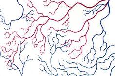Anatomie humaine en laine par Ben Cuevas