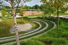 Jardin de biorétention à l'école primaire de Manassas Park, en Virginie…