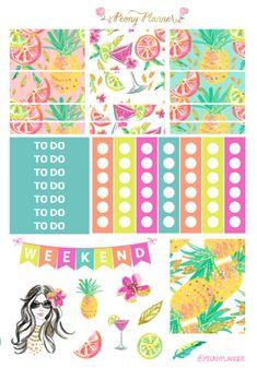 Summer Cocktail Weekly Kit | Erin Condren Planner Stickers