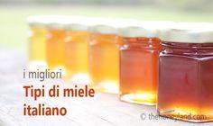 Tipi di miele italiano: oltre 50 varietà con proprietà e benefici diversi - Honeyland Magazine