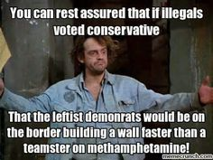 """Certainty: if illegals voted Conservative, the Leftist Democrats would be on the border building a wall faster than . . Synonyms for Democrat: Liberal, Progressive, Socialist, God-hater, treason-artist, Lenin-fan (""""useful idiot"""")."""