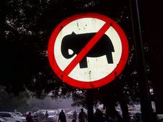"""A traffic sign that does not show up in the Texas MUTCD : """"No Elephants passing through"""""""