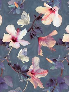 Premium Poster Butterflies and Hibiscus Flowers Juniqe Größe: 90 cm L x 60 cm B Textures Patterns, Print Patterns, Pattern Art, Pattern Design, Poster Mural, Motif Floral, Hibiscus Flowers, Pattern Wallpaper, Wall Wallpaper