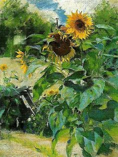 Sunflowers ~ Carl Larsson ~ (Swedish 1853-1919)