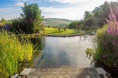 Oh what a view! 🌱💧 Bei diesem Swimming Pond von @poolscape kommt man schnell mal ins Träumen. Wovon träumt ihr? Living Pool, Swimming Ponds, Golf Courses, River, Outdoor, Water Pond, Swimming, Lawn And Garden, Outdoors