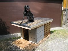 ADVERTISEMENT 10 Facts You Didn't Know About metal Dog Kennel For anyone people that already own dogs finding a place to keep them can be. Small Dog House, Build A Dog House, Dog House Plans, Metal Dog Kennel, Porch Plans, Dog Search, Niches, Dog Furniture, Outdoor Dog