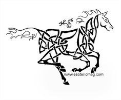 celtic knot clipart   celtic knot animals - group picture, image by tag - keywordpictures ...