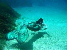 MerBella Mermaids at Rainbow River LOVE the flow of their tails! Mermaid Cove, Mermaid Diy, Mermaid Tails, Fairy Tale Images, Rainbow River, Professional Mermaid, Mermaid Swimming, Mind Relaxation, Merman