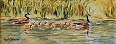 Deb Groesser - Work Detail: Swimming Lessons