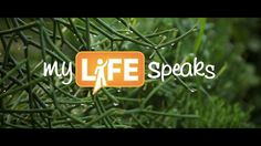 This is our new video for myLIFEspeaks Neply! So proud to be apart of this amazing organization! Repost if u wish! =) - Hillary