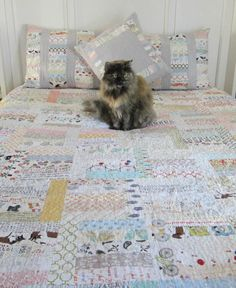 Beautiful Sunday Morning quilt, and pretty kitty.