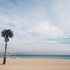 """""""de vez en cuando está bien volver a los inicios, contemplar el mar y rebobinar la cinta. pero siempre, siempre, mirando directo al horizonte, sin dudar."""""""