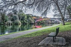 HAMILTON - RIVER VIEW Hamilton, New Zealand, River, Outdoor, Outdoors, Rivers, The Great Outdoors