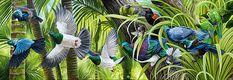 craig platt New Zealand bird and wildlife artist - New Zealand native birds. Bird Artists, New Zealand Art, Nz Art, Bird Drawings, Pencil Drawings, Native Art, Fauna, Wildlife Art, Sculpture Art