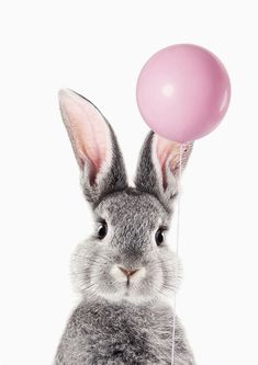 Bunny With Balloon Mini Art Print by Lotus Print Studio Without Stand 3 x 4 Kerstin B. Tier Wallpaper, Animal Wallpaper, Iphone Wallpaper, Cute Baby Animals, Animals And Pets, Funny Animals, Lapin Art, Bunny Art, Tier Fotos