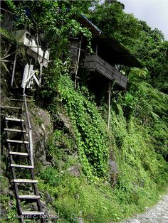 Philippines. One of too many houses standing on stilts in northern part of the country... Though you wouldn't caught me living in there nonetheless it's pretty to look at...