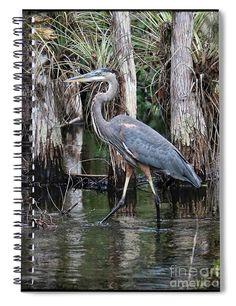 #herons #birds #heron #notebooks
