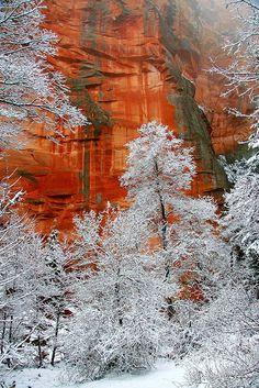 Oak Creek Canyon in the snow
