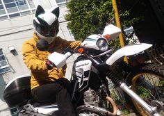 Neko Helmet  www.nitrinos.ru