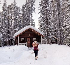 The Cutest Cabin Rentals in Banff and Lake Louise, Alberta – jenn explores - travel, landscape and lifestyle photographer % Banff National Park, National Parks, Lake Louise Winter, Fairytale Book, Mountain Cabins, Winter Cabin, Christmas Travel, Explore Travel, Cabin Rentals