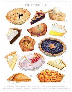 Pie Varieties Illustration // 11x14 Food Art // Limited Edition, pie art