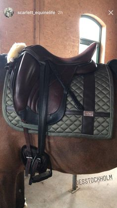 The most flattering products are always from Equestrian Stockholm. #equestrian #equestrianstockholm #horse #equestrianperformance